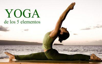 Yoga de los 5 Elementos – Talleres de enseñanza y práctica